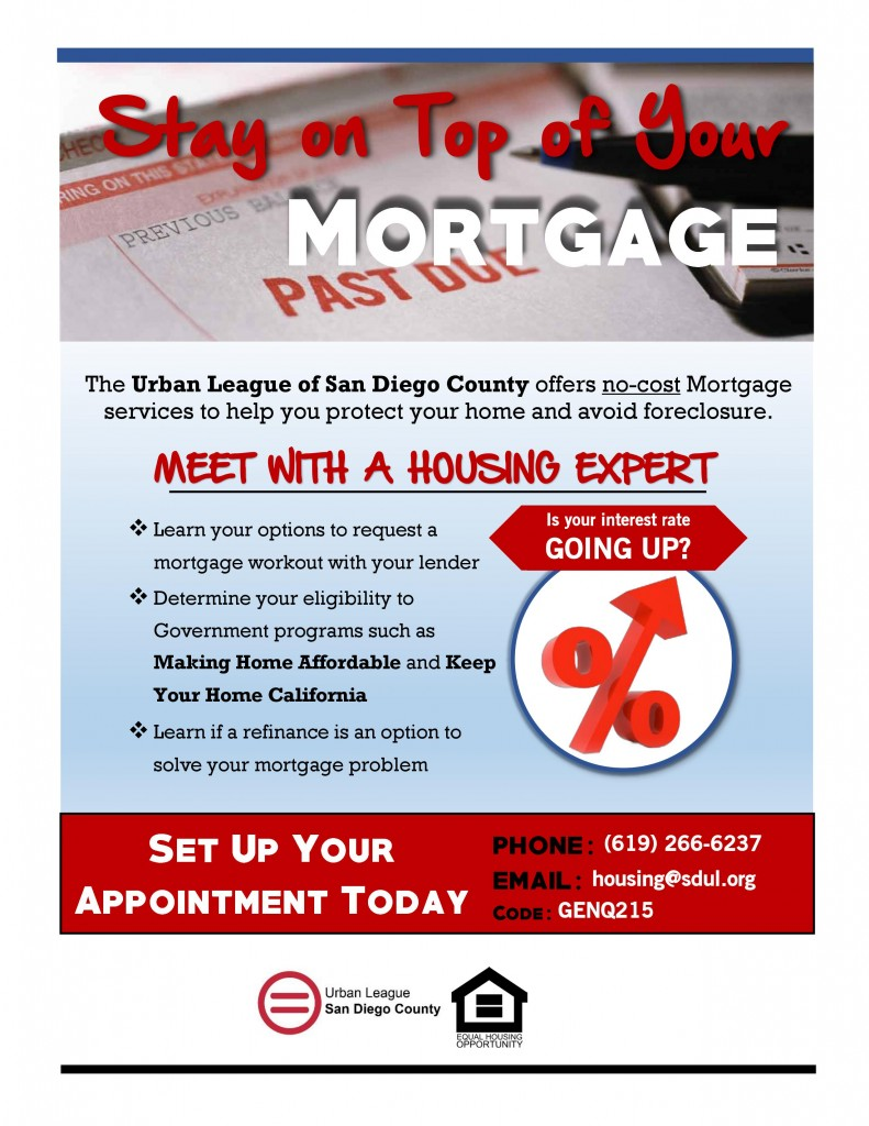 ULSDC Mortgage Delinquency Flyer